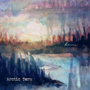 arctic tern - leaves ep cover